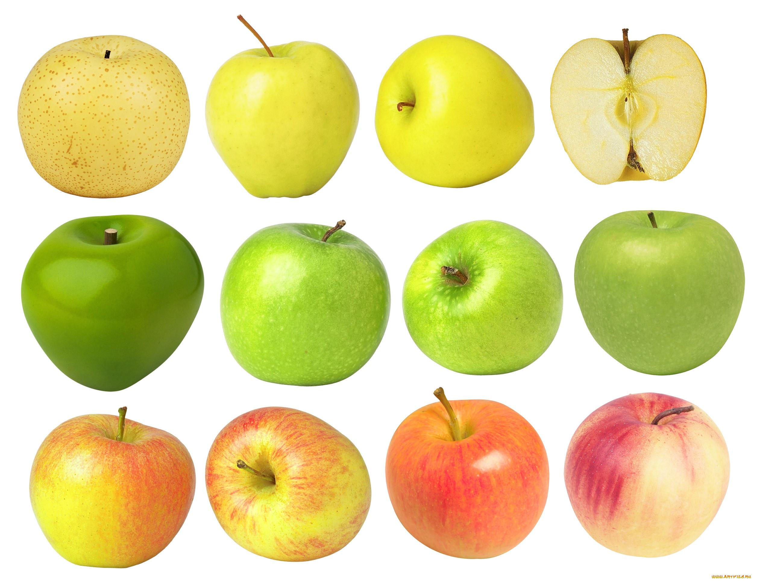 Картинки яблок разного цвета